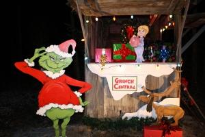 Holiday Lights 2011 023