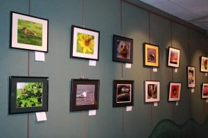 Pioneer Ridge Photo Club Art Show 003