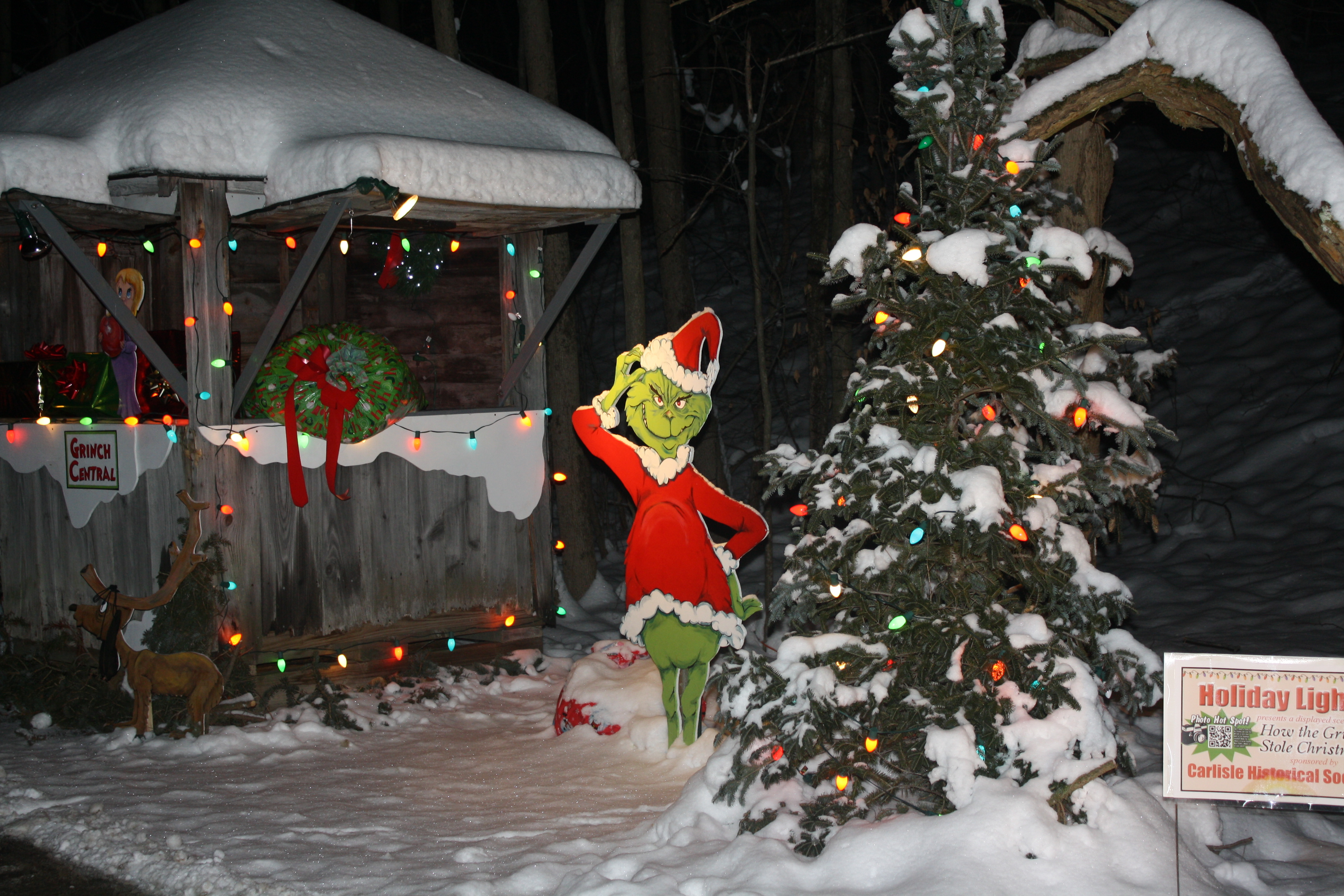 Grinch stealing lights christmas decorations - Holiday Lights 2012 038