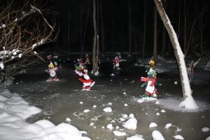holiday lights 2012 051